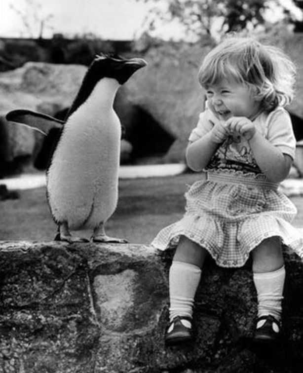 little girl... with penguin