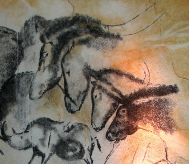 More Chauvet cave paintings, horses and rhinoceros.